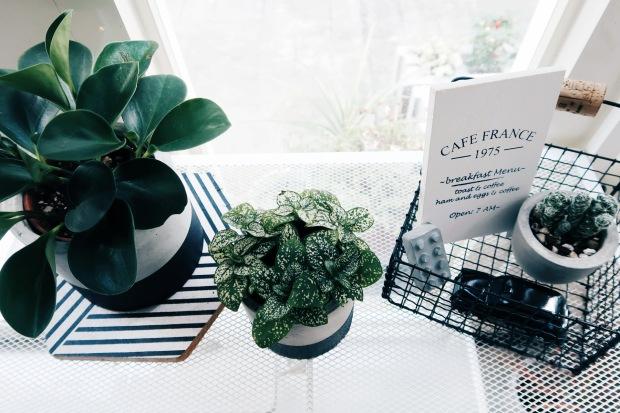 DIY 收納擺飾小黑鐵籃:花架佈置與雜貨