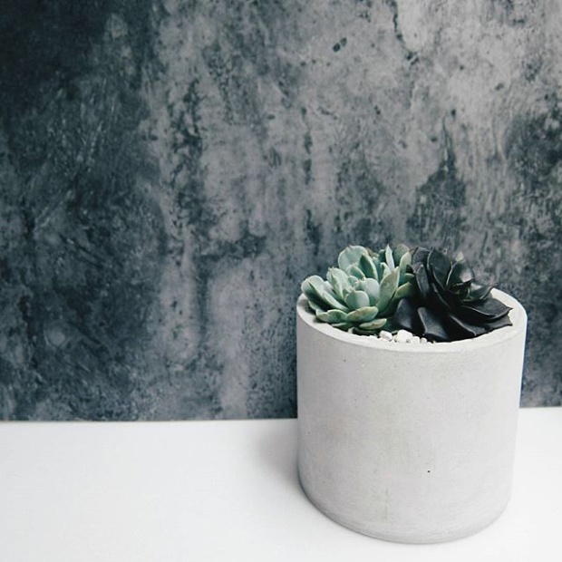 Concrete&Succulents 2017Jun