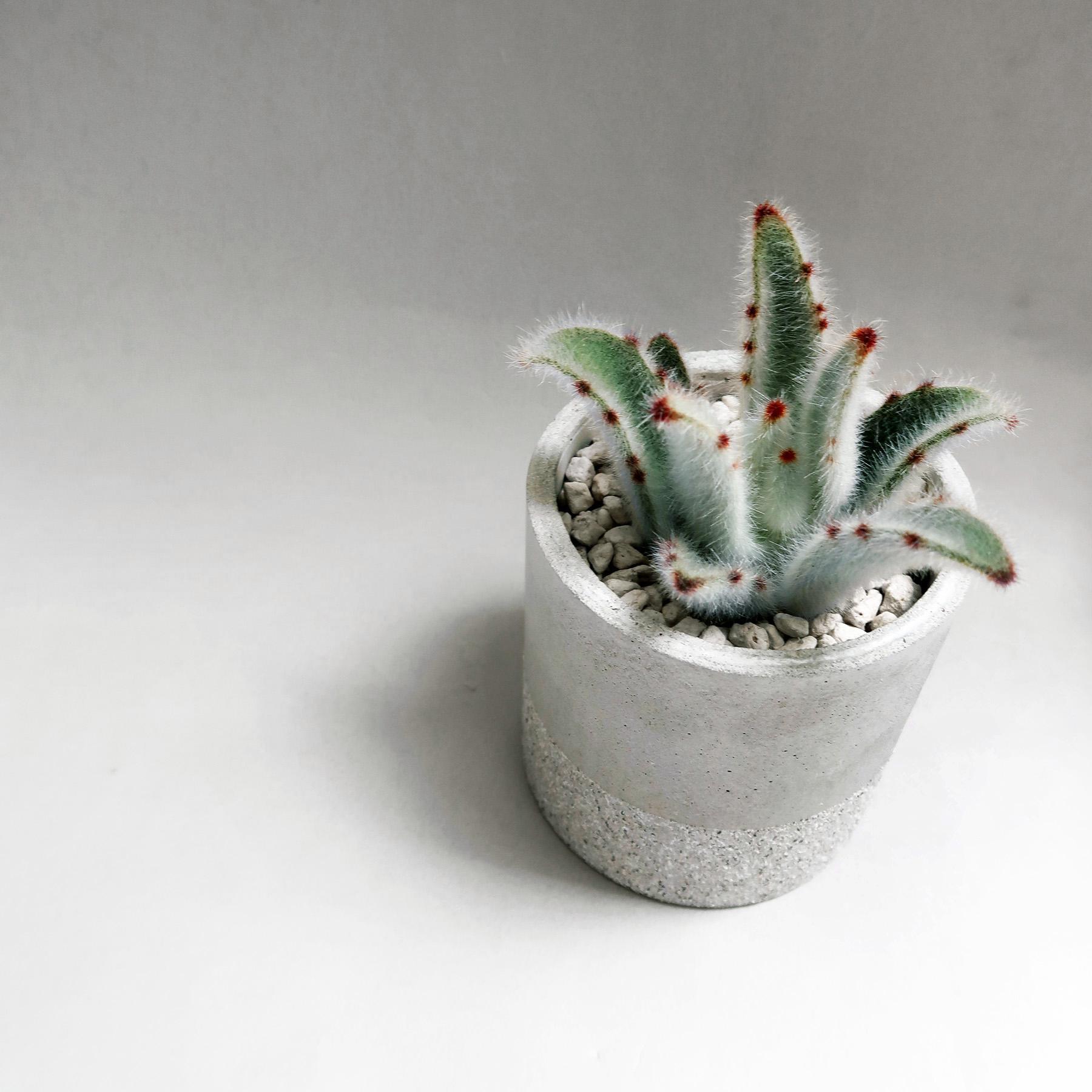 GRANITE 花崗岩等圓水泥設計盆器・盆栽