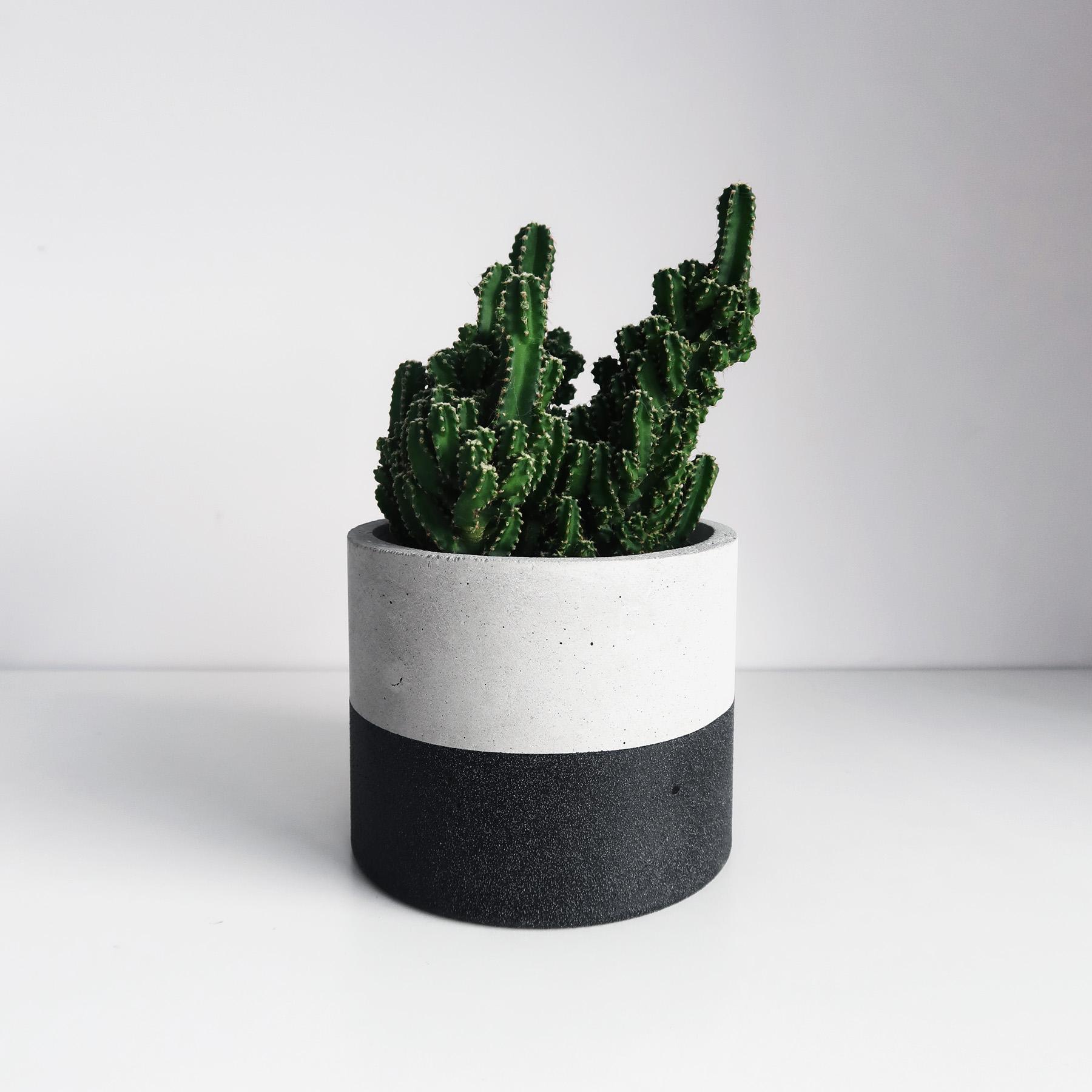 Concrete Design 黑隕石深圓水泥盆器