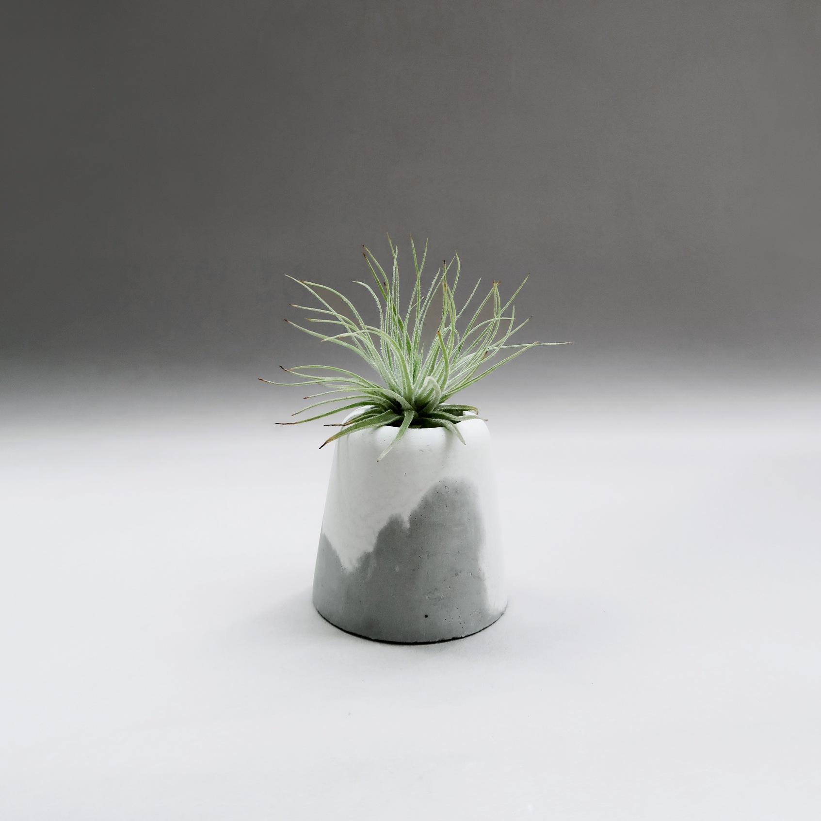 SNOW VOLCAN 小雪火山水泥設計盆器・家飾・禮物
