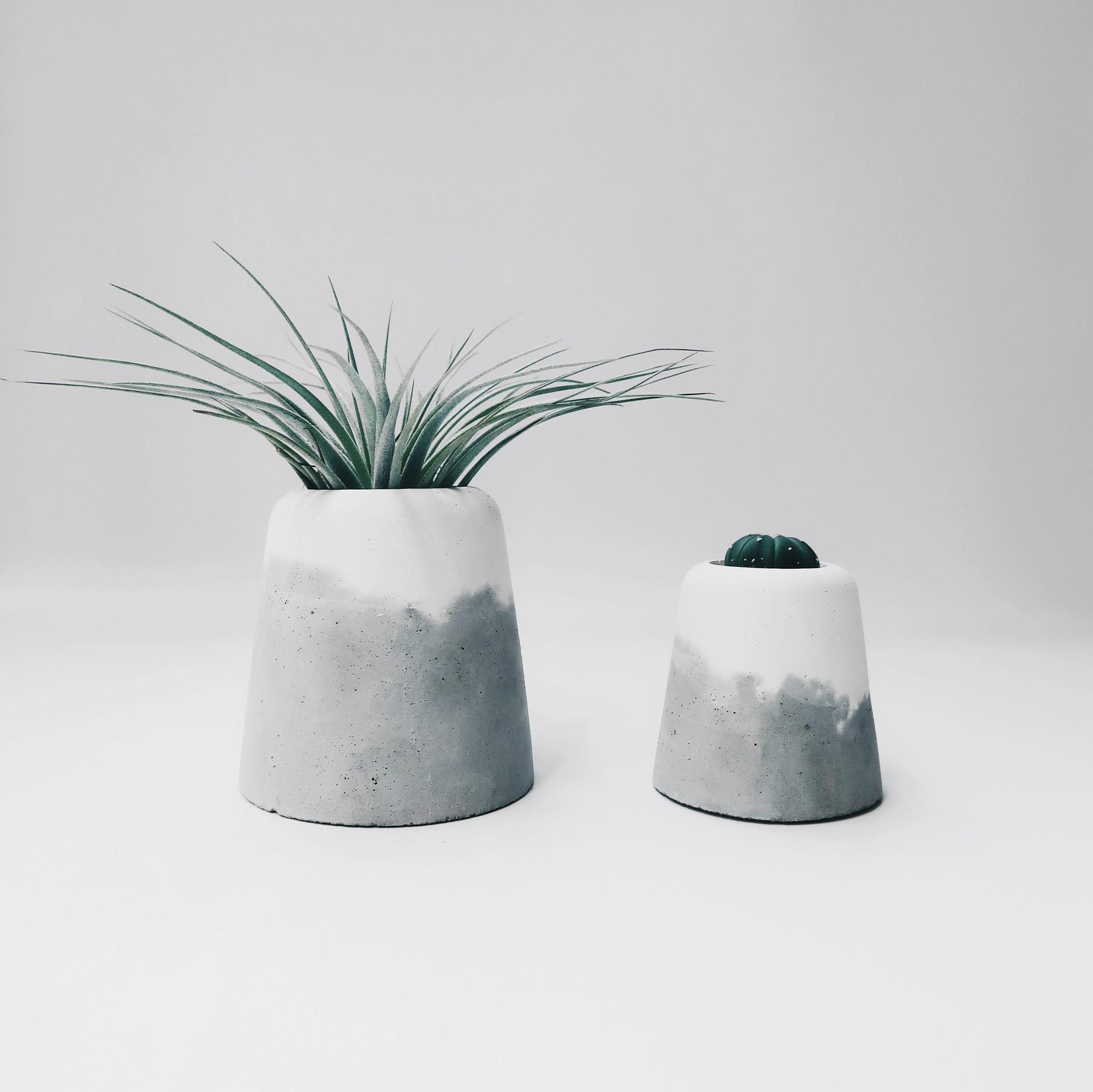 SNOW VOLCAN 雪火山多肉・仙人掌・空氣鳳梨水泥盆栽 / Succulent Concrete planter