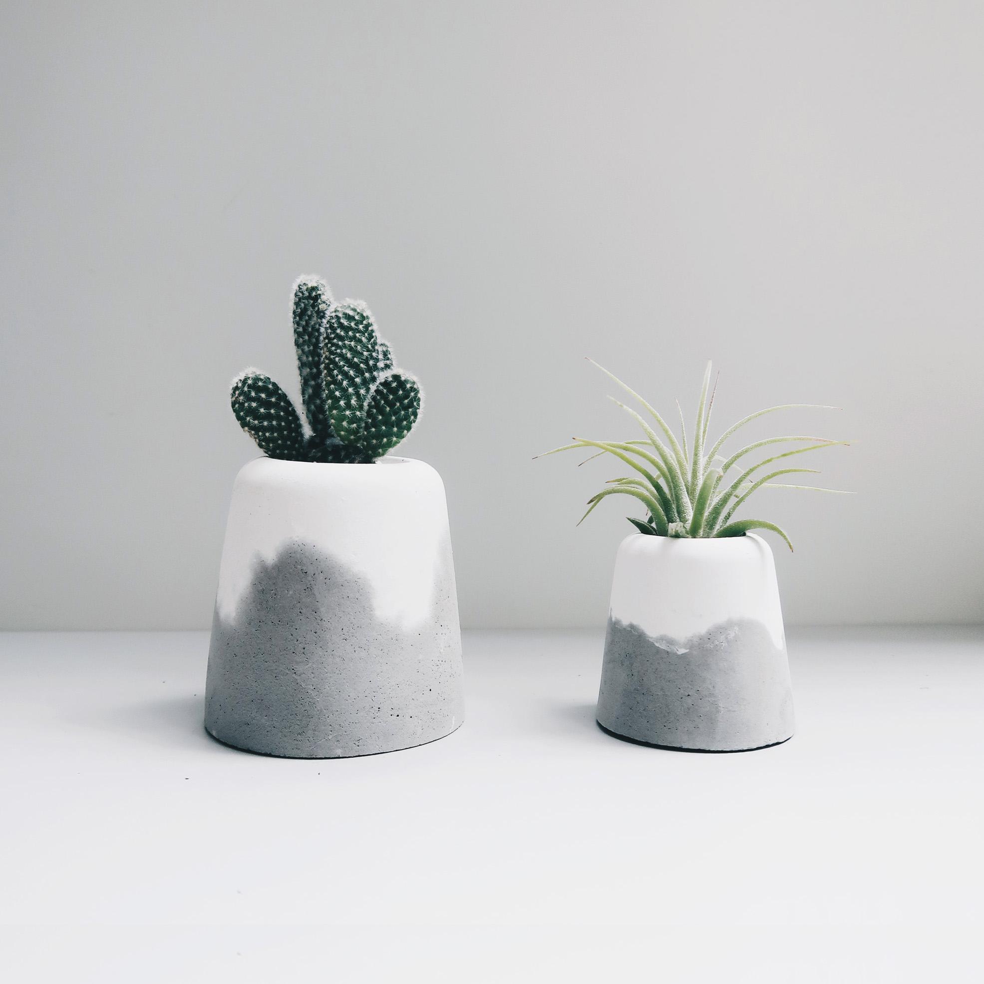 Concrete Design 水泥設計家飾・盆器・禮物